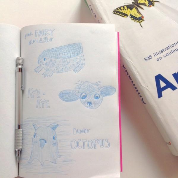 unusual animals sketch